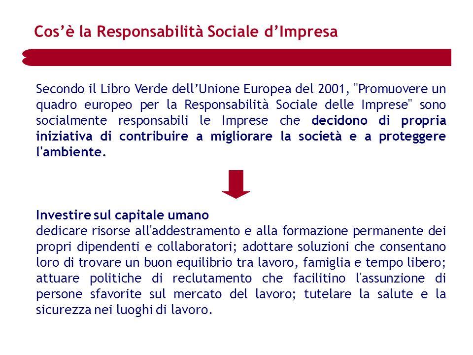 Secondo il Libro Verde dellUnione Europea del 2001,