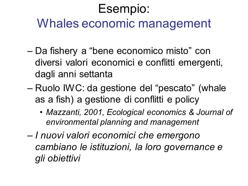 Esempio: Whales economic management –Da fishery a bene economico misto con diversi valori economici e conflitti emergenti, dagli anni settanta –Ruolo