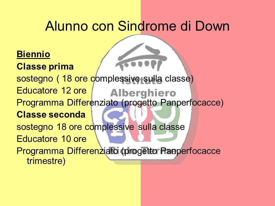 Alunno con Sindrome di Down Biennio Classe prima sostegno ( 18 ore complessive sulla classe) Educatore 12 ore Programma Differenziato (progetto Panper