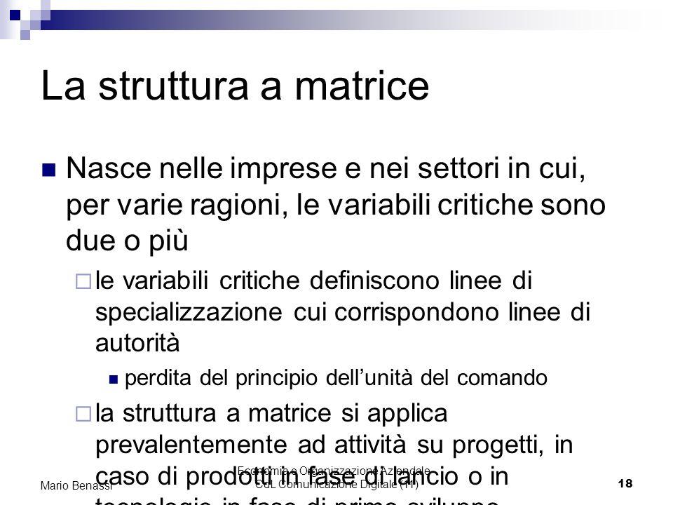 Economia e Organizzazione Aziendale - CdL Comunicazione Digitale (11)18 Mario Benassi La struttura a matrice Nasce nelle imprese e nei settori in cui,