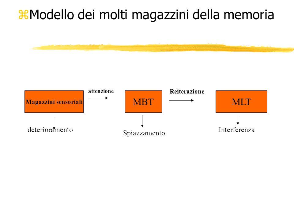 Magazzini della memoria zAtkinson e Shiffrin,1968; Waugh e Norman, 1965, hanno descritto larchitettura basilare del sistema della memoria, in termini