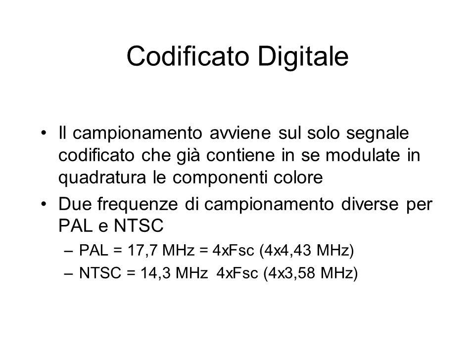 Codificato Digitale Il campionamento avviene sul solo segnale codificato che già contiene in se modulate in quadratura le componenti colore Due freque