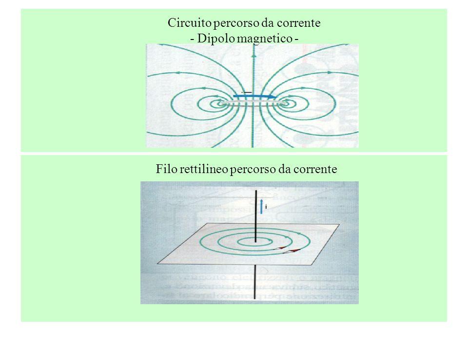 Circuito percorso da corrente - Dipolo magnetico - Filo rettilineo percorso da corrente