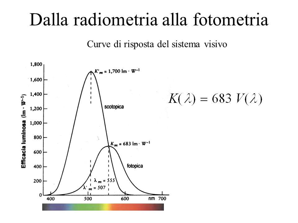 efficacia luminosa spettrale Chiamate curve di efficacia luminosa spettrale efficienza luminosa spettrale Normalizzando rispetto al massimo K( ) e K( ) si ottengono le curve di efficienza luminosa spettrale V( ) e V( ) che incontreremo nella teoria del tristimolo Purkinje Si noti lo spostamento verso il rosso della sensibilità fotopica, chiamato scostamento di Purkinje La funzione K( La funzione K( ) mette in relazione la radiometria con la fotometria: dice in che modo lenergia radiante viene convertita in informazione visiva.