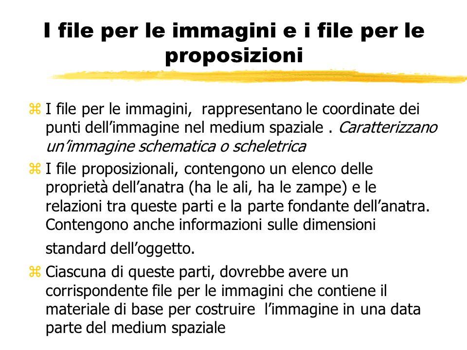 I file per le immagini e i file per le proposizioni zI file per le immagini, rappresentano le coordinate dei punti dellimmagine nel medium spaziale. C