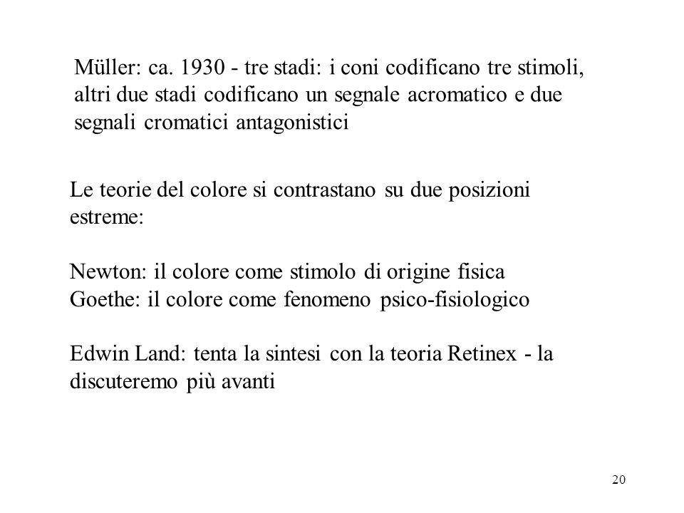 20 Müller: ca. 1930 - tre stadi: i coni codificano tre stimoli, altri due stadi codificano un segnale acromatico e due segnali cromatici antagonistici