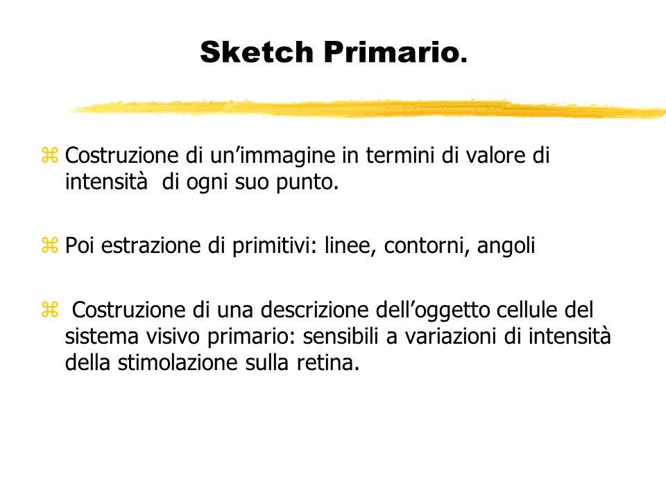 Sketch Primario. zCostruzione di unimmagine in termini di valore di intensità di ogni suo punto. zPoi estrazione di primitivi: linee, contorni, angoli