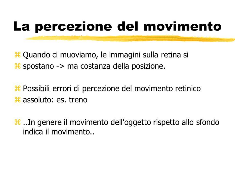 La percezione del movimento zQuando ci muoviamo, le immagini sulla retina si zspostano -> ma costanza della posizione. zPossibili errori di percezione