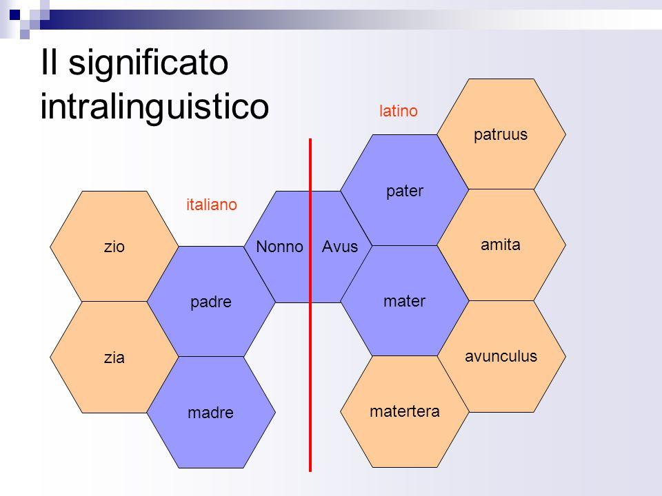 Il significato intralinguistico zio padre pater patruus zia madre Nonno Avus mater amita avunculus matertera italiano latino