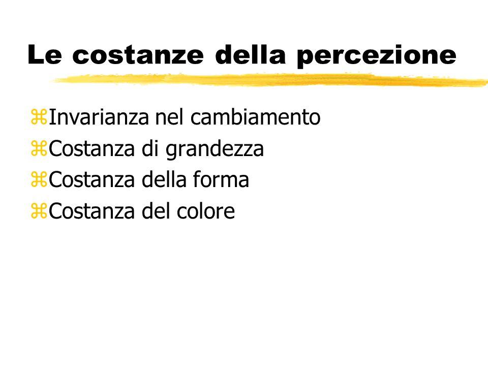 Le costanze della percezione zInvarianza nel cambiamento zCostanza di grandezza zCostanza della forma zCostanza del colore