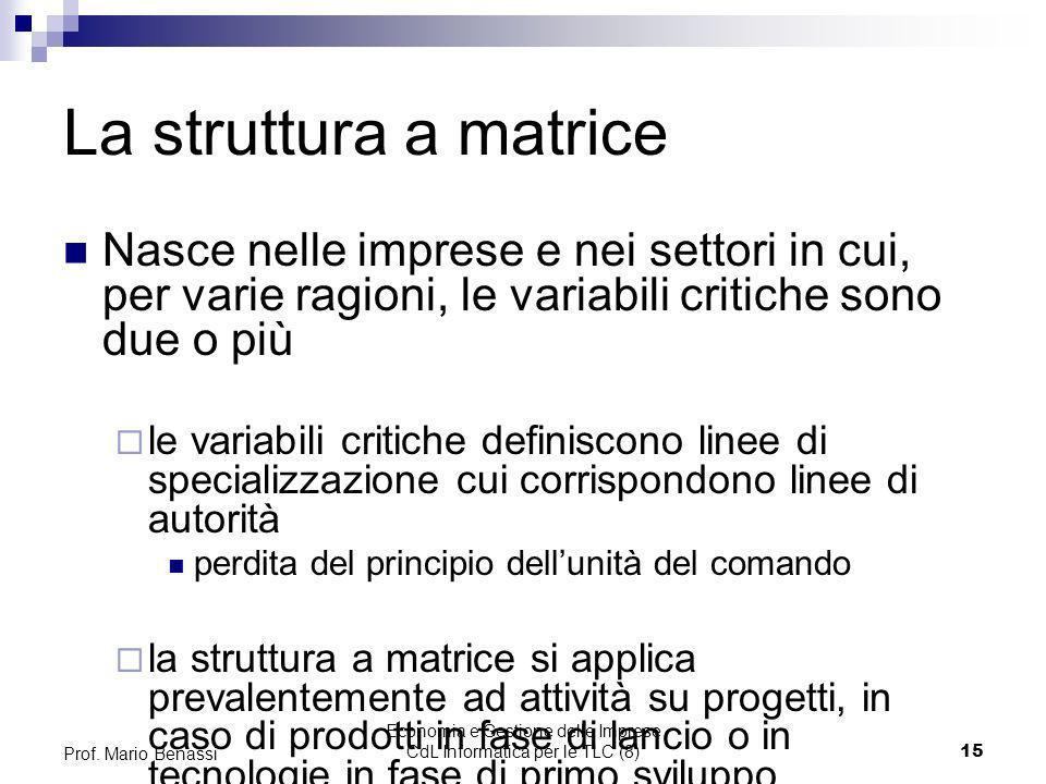 Economia e Gestione delle Imprese CdL Informatica per le TLC (8)15 Prof. Mario Benassi La struttura a matrice Nasce nelle imprese e nei settori in cui