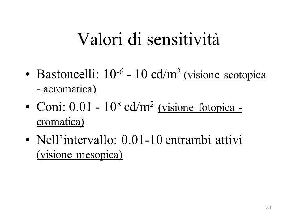 21 Valori di sensitività Bastoncelli: 10 -6 - 10 cd/m 2 (visione scotopica - acromatica) Coni: 0.01 - 10 8 cd/m 2 (visione fotopica - cromatica) Nelli