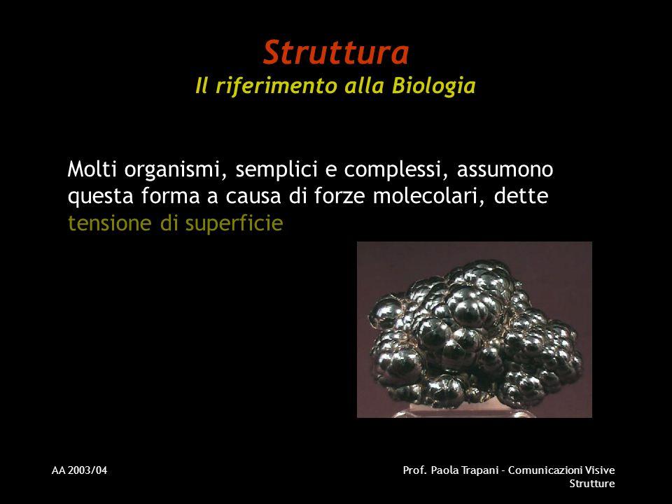 AA 2003/04Prof. Paola Trapani - Comunicazioni Visive Strutture Molti organismi, semplici e complessi, assumono questa forma a causa di forze molecolar