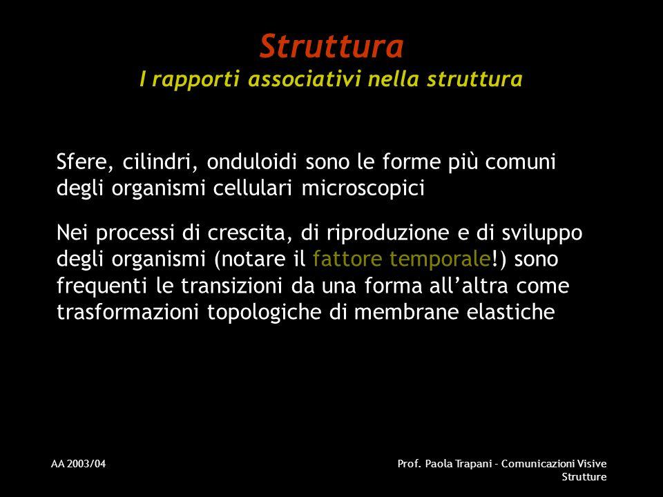 AA 2003/04Prof. Paola Trapani - Comunicazioni Visive Strutture Struttura I rapporti associativi nella struttura Sfere, cilindri, onduloidi sono le for