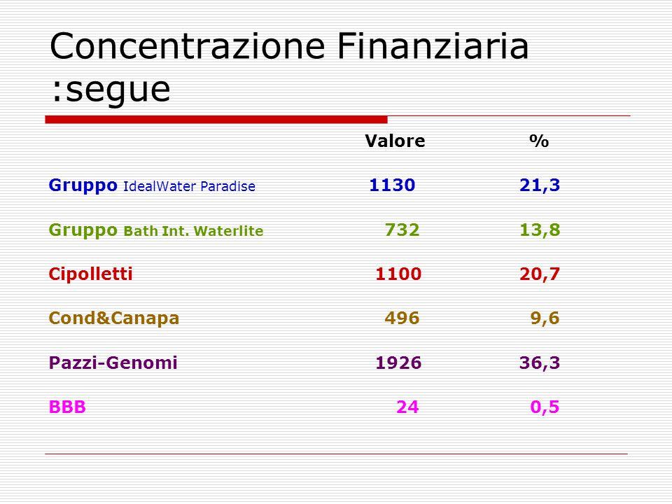 Concentrazione Finanziaria :segue Valore % Gruppo IdealWater Paradise 113021,3 Gruppo Bath Int.