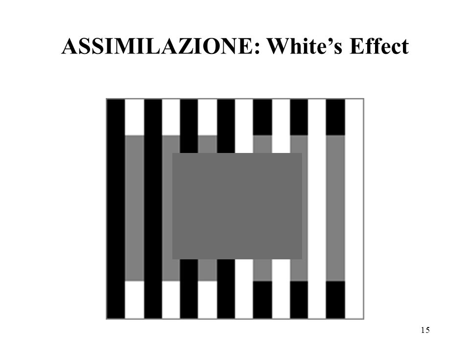 15 ASSIMILAZIONE: Whites Effect