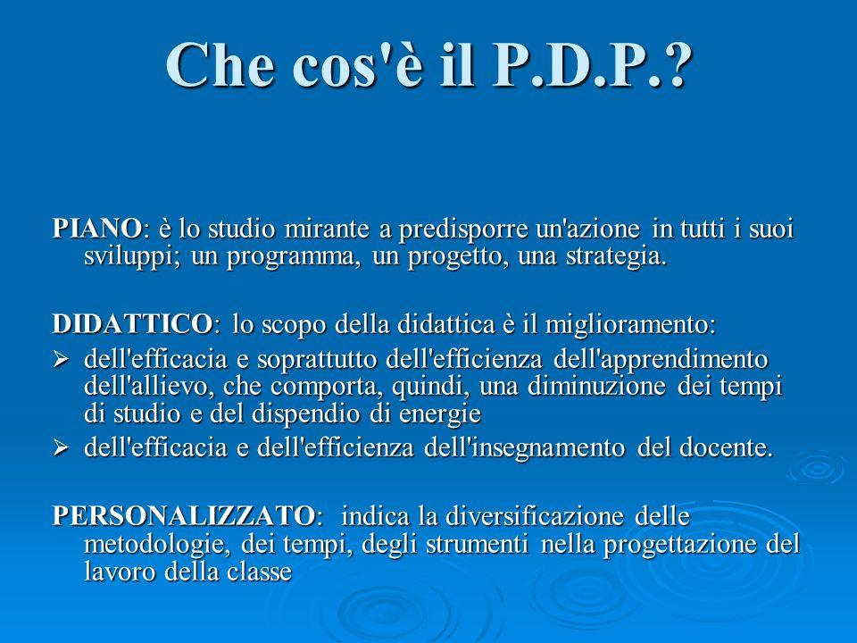 Che cos è il P.D.P..