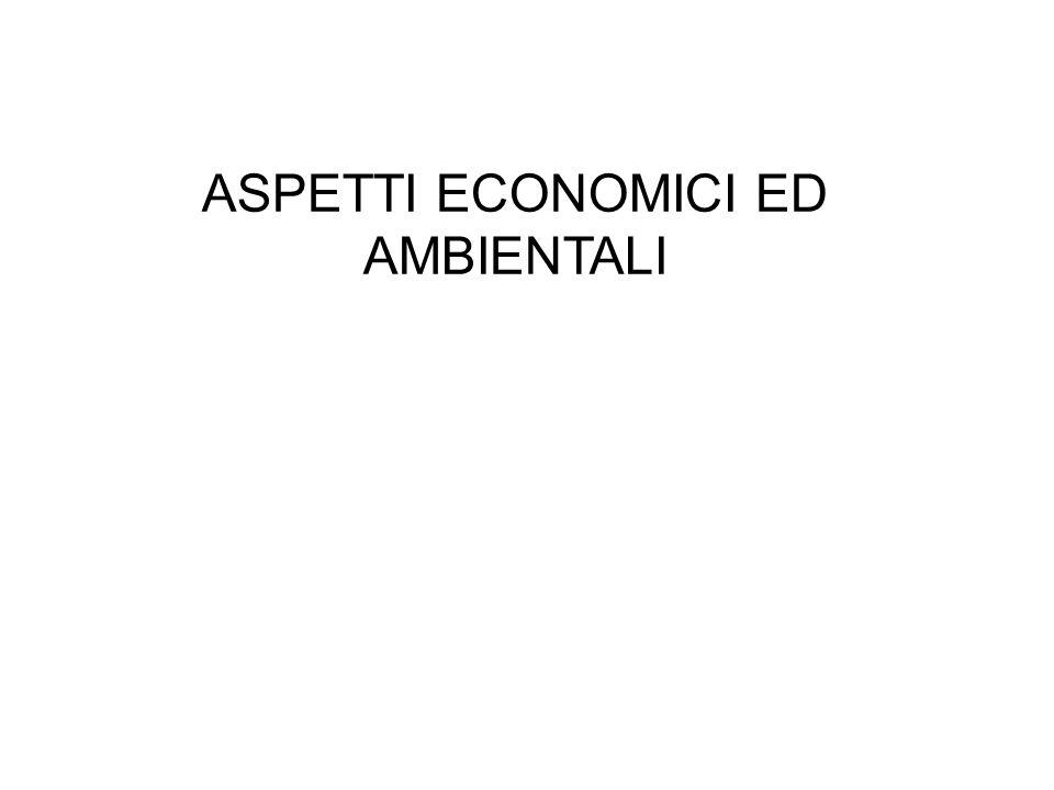 ASPETTI ECONOMICI ED AMBIENTALI