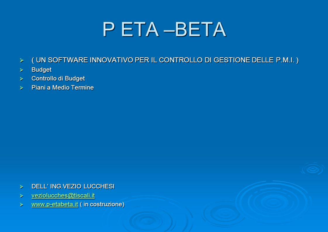 P ETA –BETA ( UN SOFTWARE INNOVATIVO PER IL CONTROLLO DI GESTIONE DELLE P.M.I. ) ( UN SOFTWARE INNOVATIVO PER IL CONTROLLO DI GESTIONE DELLE P.M.I. )