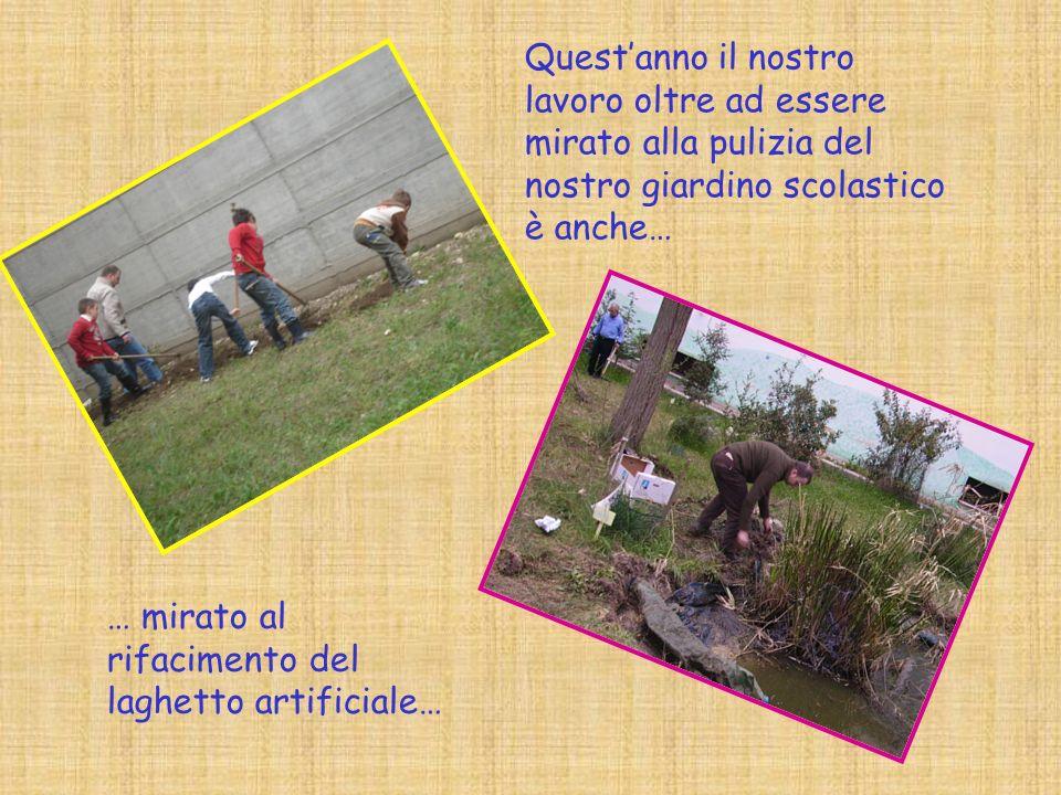 Questanno il nostro lavoro oltre ad essere mirato alla pulizia del nostro giardino scolastico è anche… … mirato al rifacimento del laghetto artificiale…