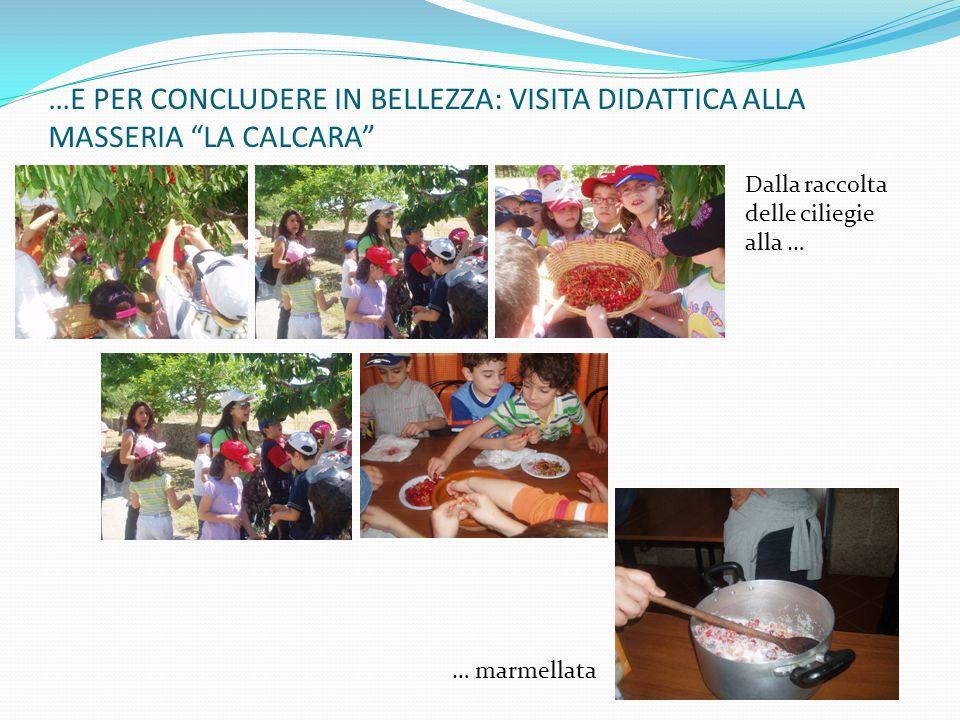 …E PER CONCLUDERE IN BELLEZZA: VISITA DIDATTICA ALLA MASSERIA LA CALCARA Dalla raccolta delle ciliegie alla … … marmellata