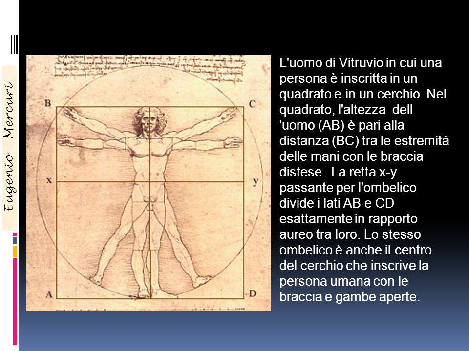 L'uomo di Vitruvio in cui una persona è inscritta in un quadrato e in un cerchio. Nel quadrato, l'altezza dell 'uomo (AB) è pari alla distanza (BC) tr