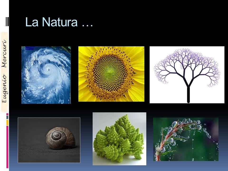 La Natura … Eugenio Mercuri