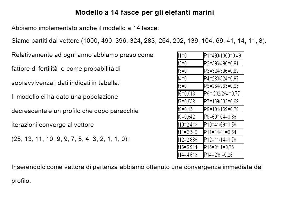 Modello a 14 fasce per gli elefanti marini Abbiamo implementato anche il modello a 14 fasce: Siamo partiti dal vettore (1000, 490, 396, 324, 283, 264, 202, 139, 104, 69, 41, 14, 11, 8).