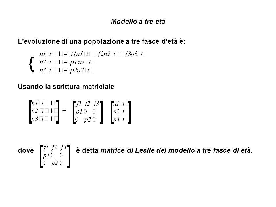 Modello a tre età L evoluzione di una popolazione a tre fasce d età è: Usando la scrittura matriciale = dove è detta matrice di Leslie del modello a tre fasce di età.