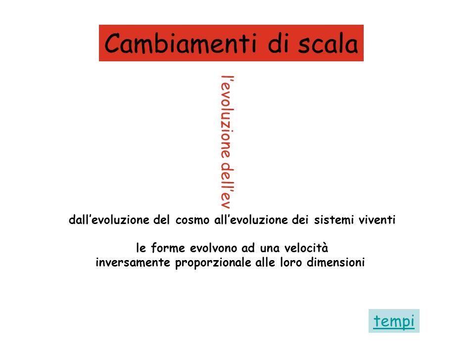 levoluzione dellevoluzione Cambiamenti di scala dallevoluzione del cosmo allevoluzione dei sistemi viventi le forme evolvono ad una velocità inversame