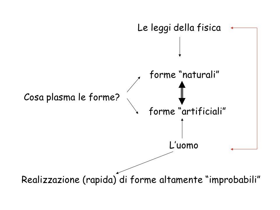 Cosa plasma le forme? forme naturali forme artificiali Le leggi della fisica Luomo Realizzazione (rapida) di forme altamente improbabili
