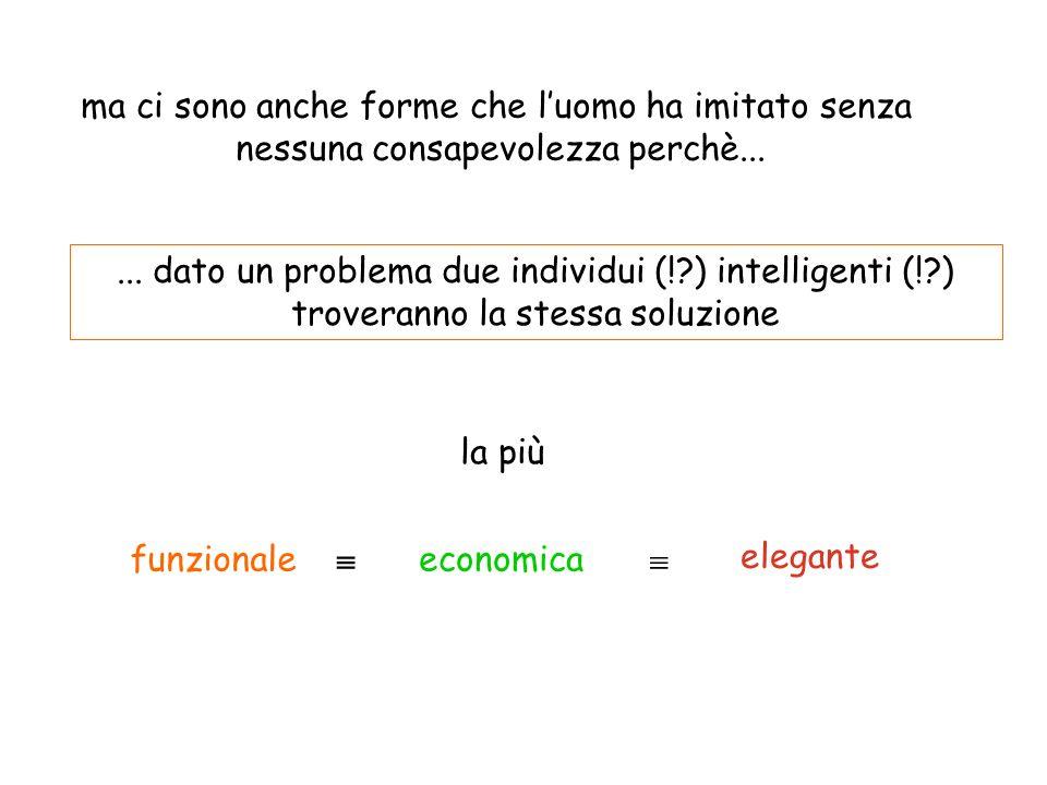 ... dato un problema due individui (!?) intelligenti (!?) troveranno la stessa soluzione economica elegante funzionale la più ma ci sono anche forme c