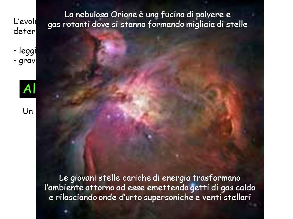 Levoluzione della materia dal Big Bang (t=0) a oggi (t~12x10 9 anni) determinata da: leggi di simmetria e di conservazione gravità, elettromagnetismo,