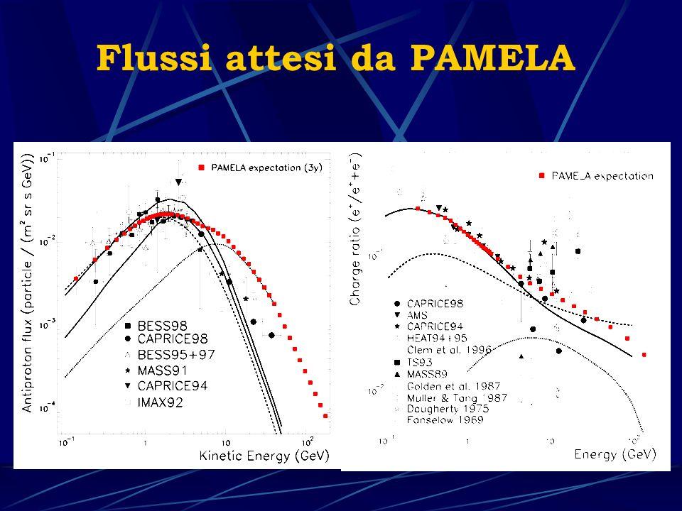 Satellite Resurs-DK1 Massa totale: 10 ton Per PAMELA: 750 Kg Orbita ellittica: 300-600 Km Inclinazione: 70.4° Periodo di operazione: 3 anni Lanciatore