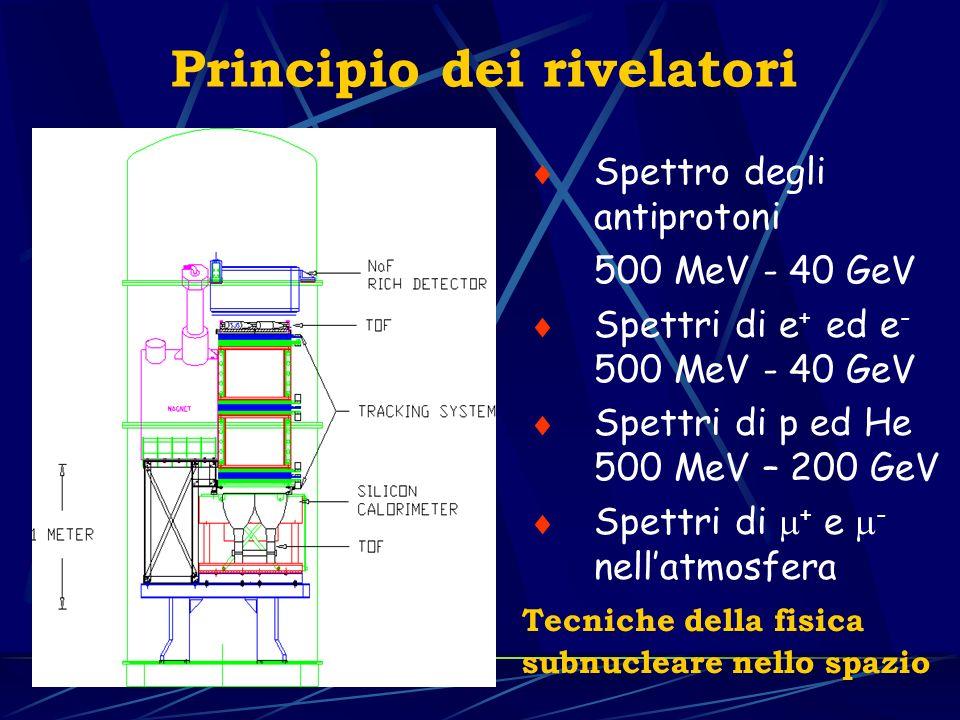 Spettro degli antiprotoni 500 MeV - 40 GeV Spettri di e + ed e - 500 MeV - 40 GeV Spettri di p ed He 500 MeV – 200 GeV Spettri di + e - nellatmosfera Principio dei rivelatori Tecniche della fisica subnucleare nello spazio