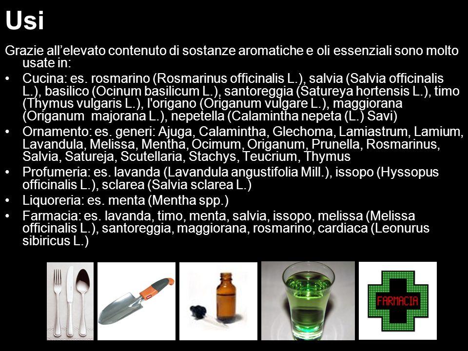Uso Grazie allelevato contenuto di sostanze aromatiche e oli essenziali sono molto usate in: Cucina: es. rosmarino (Rosmarinus officinalis L.), salvia
