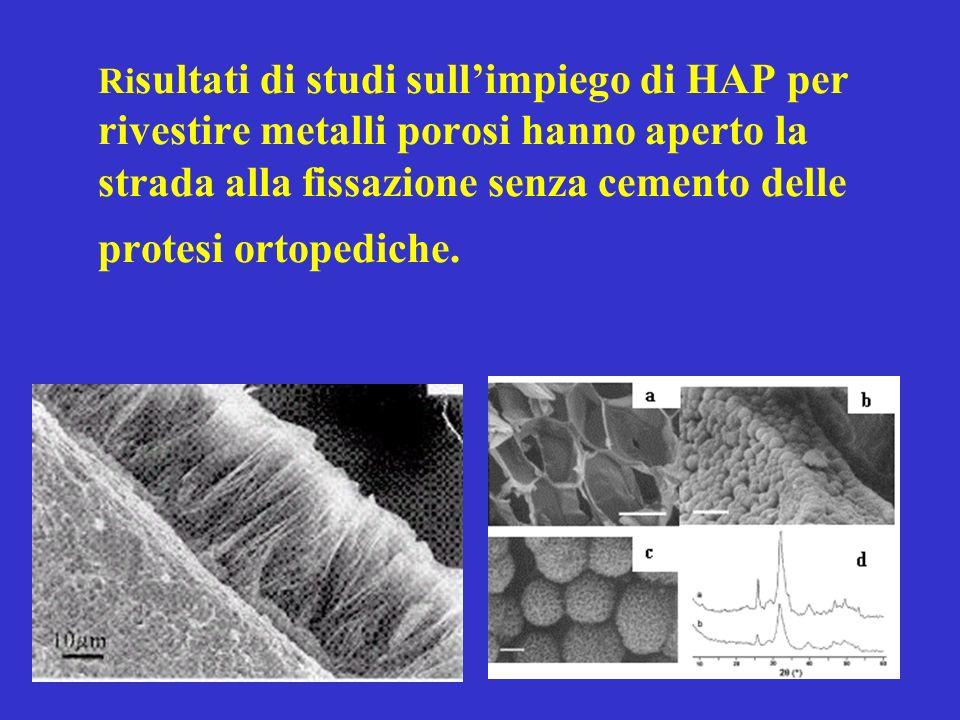 Ri sultati di studi sullimpiego di HAP per rivestire metalli porosi hanno aperto la strada alla fissazione senza cemento delle protesi ortopediche.