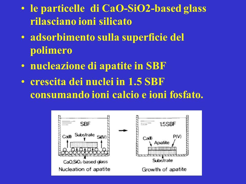 le particelle di CaO-SiO2-based glass rilasciano ioni silicato adsorbimento sulla superficie del polimero nucleazione di apatite in SBF crescita dei nuclei in 1.5 SBF consumando ioni calcio e ioni fosfato.