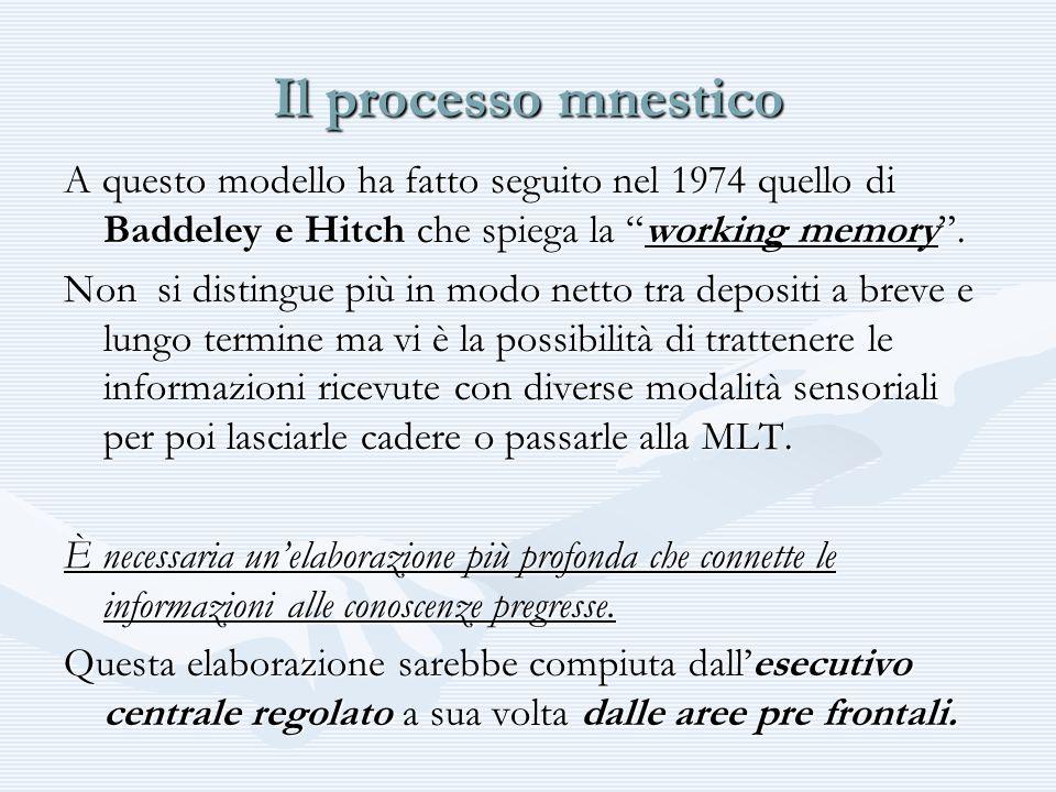 Il processo mnestico A questo modello ha fatto seguito nel 1974 quello di Baddeley e Hitch che spiega la working memory. Non si distingue più in modo