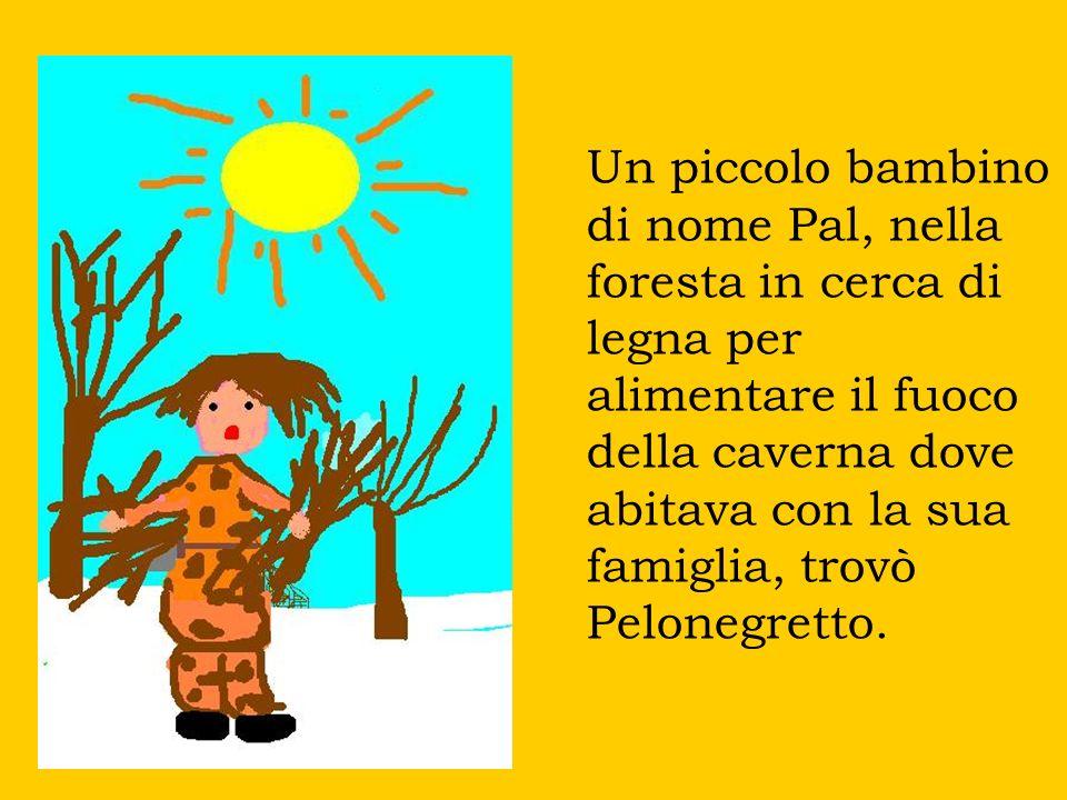 Un piccolo bambino di nome Pal, nella foresta in cerca di legna per alimentare il fuoco della caverna dove abitava con la sua famiglia, trovò Pelonegr
