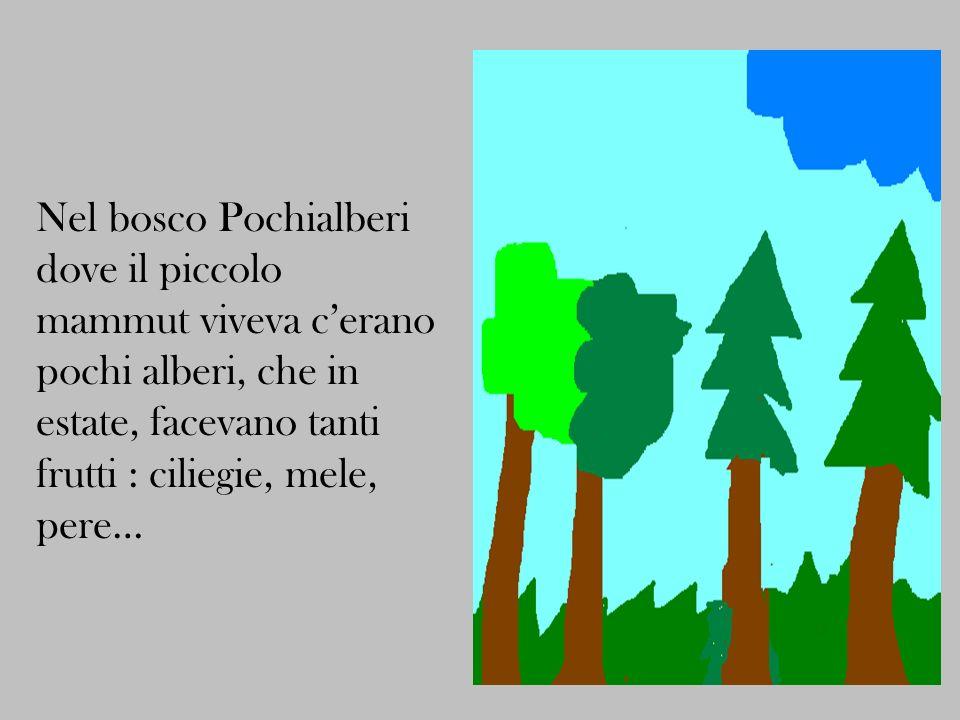 Nel bosco Pochialberi dove il piccolo mammut viveva cerano pochi alberi, che in estate, facevano tanti frutti : ciliegie, mele, pere…