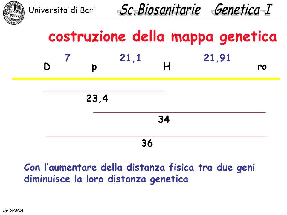 costruzione della mappa genetica D p H ro u.m. 7 21,1 21,91 23,4 34 36 Con laumentare della distanza fisica tra due geni diminuisce la loro distanza g