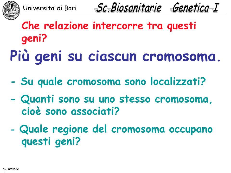 Indagine genetica 1.Sono sul cromosoma X. 2. Sono sugli autosomi.