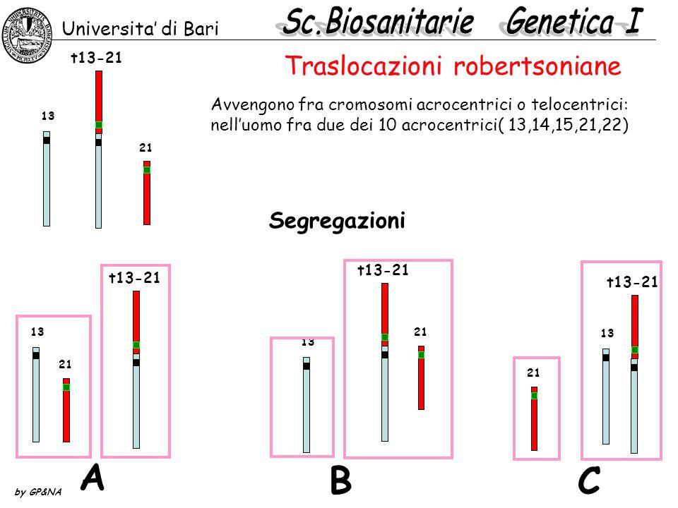 21 13 t13-21 Segregazioni A BC 21 13 t13-21 21 t13-21 13 Universita di Bari by GP&NA Traslocazioni robertsoniane Avvengono fra cromosomi acrocentrici