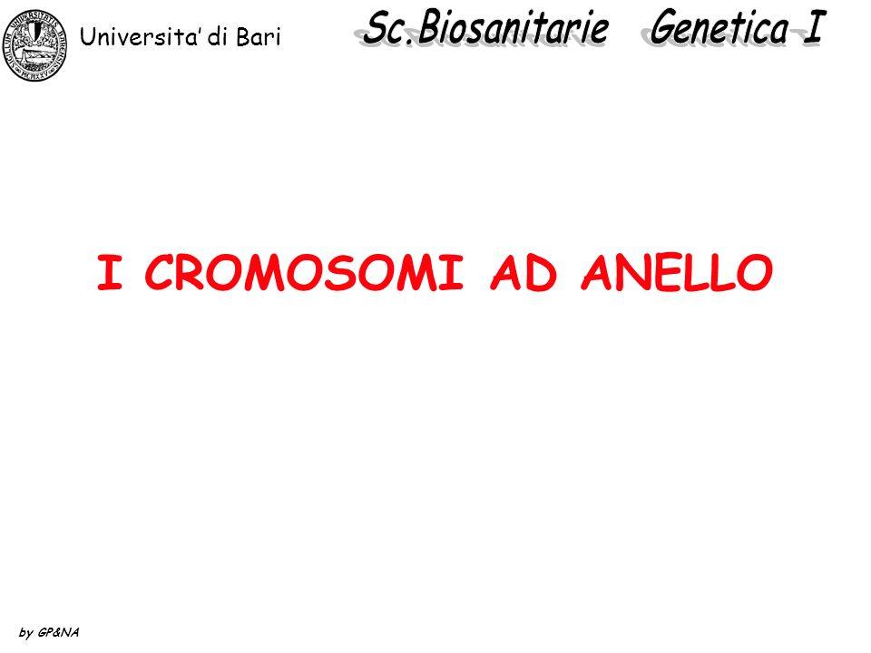 I CROMOSOMI AD ANELLO Universita di Bari by GP&NA
