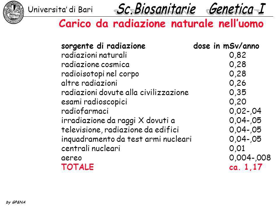 Carico da radiazione naturale nelluomo sorgente di radiazione dose in mSv/anno radiazioni naturali0,82 radiazione cosmica0,28 radioisotopi nel corpo 0