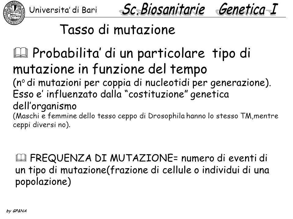 Tassi di mutazione spontanea organismogenetasso Zea maysSh>sh1x10 -6 per generazione Su>su2x10 -6 per generazione D.