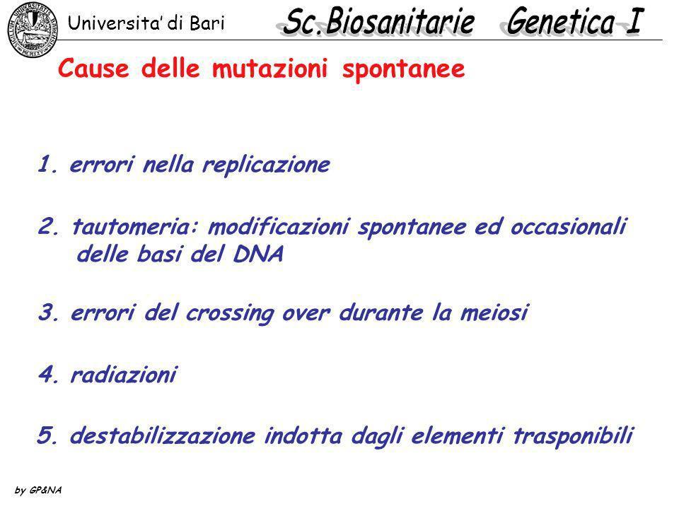 Cause delle mutazioni spontanee 1. errori nella replicazione 2. tautomeria: modificazioni spontanee ed occasionali delle basi del DNA 3. errori del cr