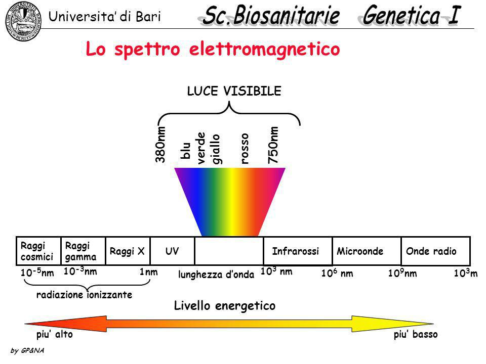 Lo spettro elettromagnetico Universita di Bari by GP&NA 380nm blu verde giallo rosso 750nm LUCE VISIBILE Onde radio Microonde UVRaggi X Raggi gamma Ra