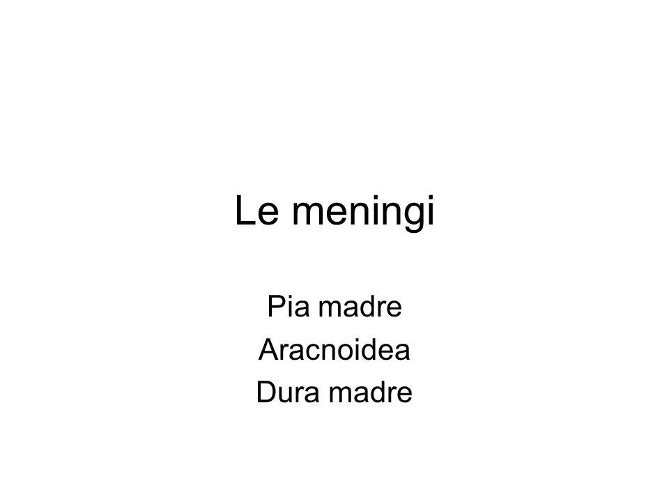 Le meningi Pia madre Aracnoidea Dura madre